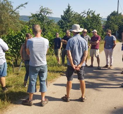 Rencontre réseau viticulture (26/07/2018)