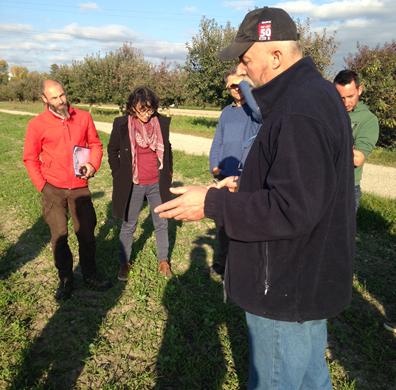 Rencontre réseau de fermes  AGRO-Form sur la carotte