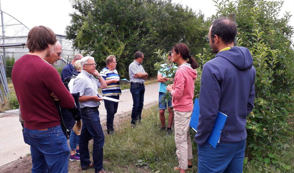 Réseau de fermes arboriculture – visites de fermes le 15 juillet 2019